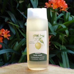 Citrus & Ginger Root Body Wash (Earth Sap)