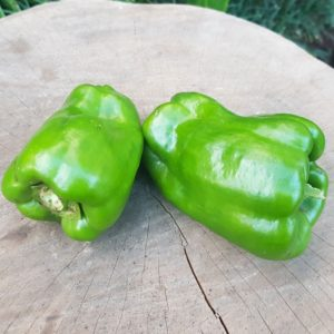 Organic Green Peppers, 2s (Wensleydale Farms)