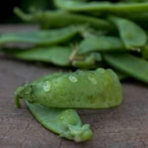 Organic Snap Peas, 125g (Wensleydale Farms)