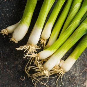 Organic Spring Onions (Wensleydale Farms)