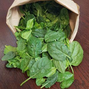 Baby Spinach, bag (Urban Fresh)