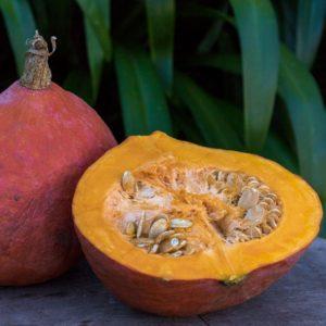 Organic Hokkaido Pumpkin (Wensleydale Farms)